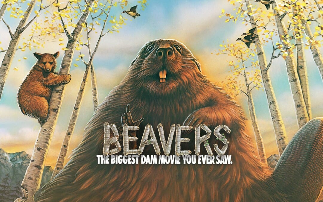 Where to See Beavers
